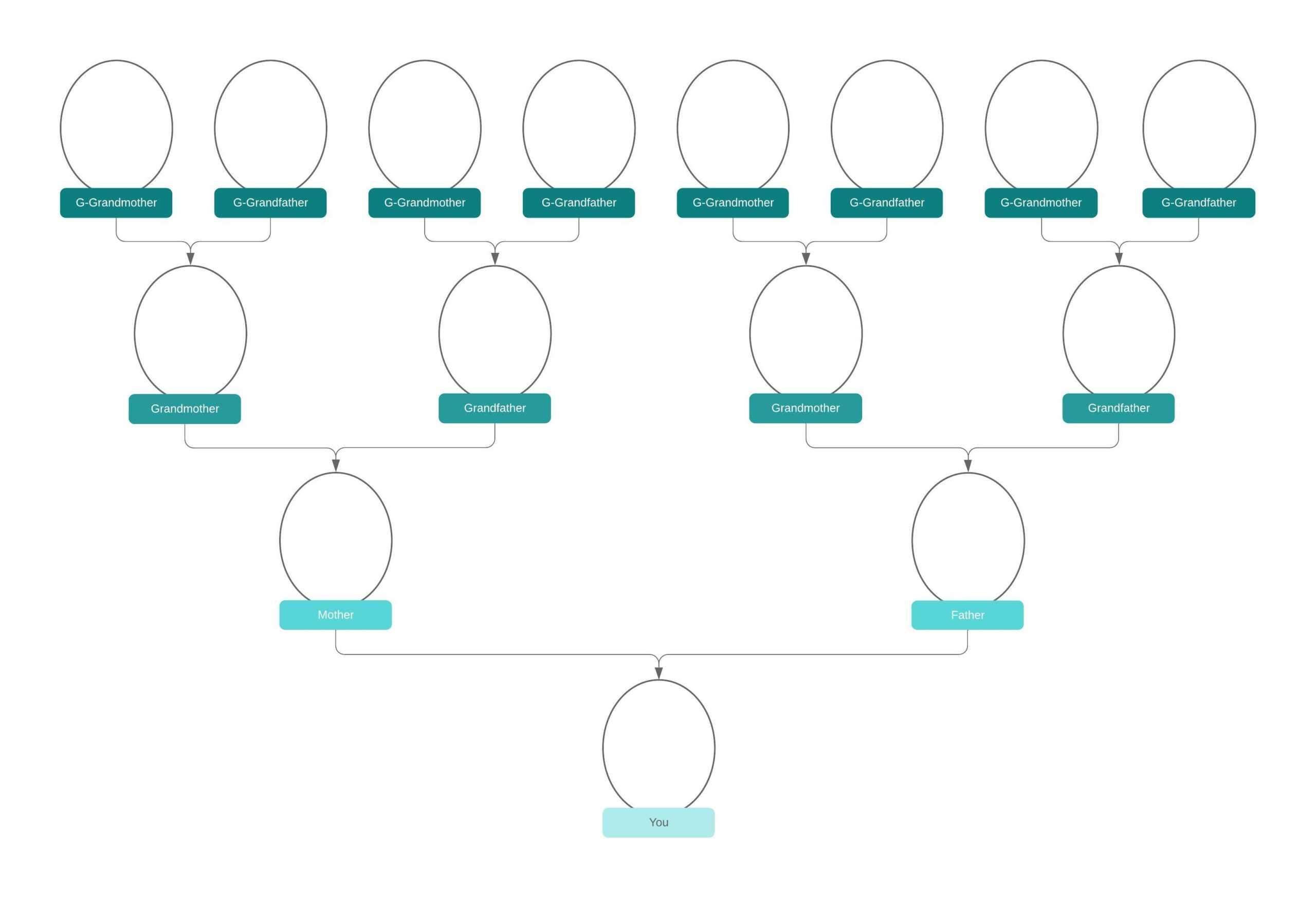 Family Tree Generator   Lucidchart Intended For Blank Tree Diagram Template